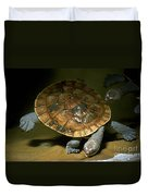 Turtles Float Duvet Cover