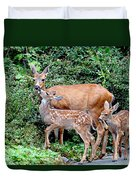 Twin Fawns And Mother Deer Duvet Cover