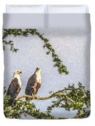 Two African Fish Eagles Haliaeetus Vocifer  Duvet Cover