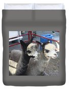 Two Alpacas Duvet Cover