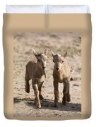 Two Aoudad Babies Playing Duvet Cover