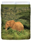 Two Elephants Walking Through The Grass Duvet Cover