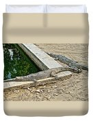 Two Gharial Crocodiles In Gharial Conservation Breeding Center In Chitwan Np-nepal   Duvet Cover