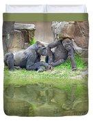 Two Gorillas Relaxing II Duvet Cover
