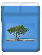 Two Heliotrope Trees On Tropical Beach Art Prints Duvet Cover