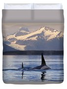 Two Killer Whales Surface In Lynn Canal Duvet Cover