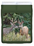 Two Mule Deer Bucks With Velvet Antlers Interact Duvet Cover
