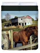 Two Quarter Horses In A Barnyard Duvet Cover