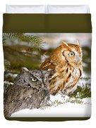 Two Screech Owls Duvet Cover
