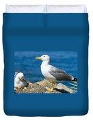 Two Seagull Duvet Cover