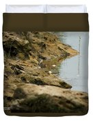 Two Spotted Sandpipers On The Flint Rivers Banks Duvet Cover