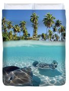 Two Stingrays 1 Duvet Cover