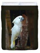 Umbrella Macaw Duvet Cover