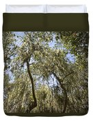 Under The Canopy - The Magical And Mysterious Trees Of The Los Osos Oak Reserve Duvet Cover