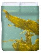 Underwater Shot Of Seaweed Plant Floating Leaves Duvet Cover