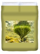 Underwater Shot Of Seaweed Plant Surface Reflected Duvet Cover