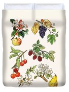 Unidentified Montage Of Fruit Duvet Cover