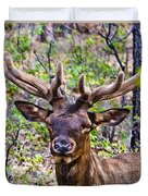 Up Close And Personal With An Elk Duvet Cover