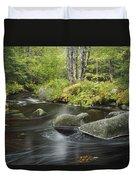 Upper Bear River In Early Autumn Nova Duvet Cover