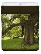 Valley Oak Duvet Cover