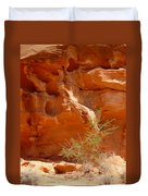 Valley Of Fire Rock Formation Duvet Cover