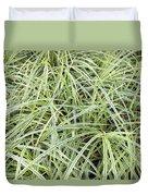 Variegated Monkey Grass Background Duvet Cover