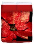 Variegated Poinsettia I Duvet Cover