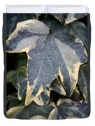 Varigated Ivy Leaves Duvet Cover