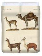 Various Camels Duvet Cover
