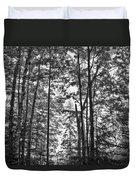 Vermont Forest Sunrise Ricker Pond Black And White Duvet Cover