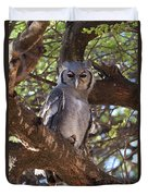 Verreauxs Eagle Owl In Tree Duvet Cover