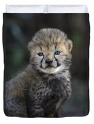 Very Young Cheetah Cub Maasai Mara Duvet Cover by Suzi Eszterhas