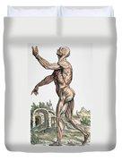 Vesalius: Muscles 02, 1543 Duvet Cover