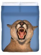 V.hurst Tk21663d, Mountain Lion Growling Duvet Cover
