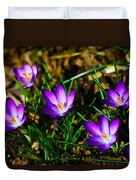 Vibrant Crocuses Duvet Cover by Karol Livote