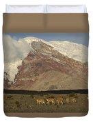 Vicuna Herd Grazing At Mt Chimborazo Duvet Cover