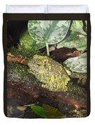 Vietnamese Mossy Frog Duvet Cover