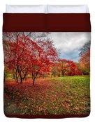 View Of Autumn Duvet Cover