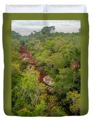 View Of Cano Cristales In Colombia Duvet Cover