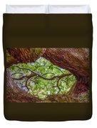 View Through Angel Oak Tree Duvet Cover