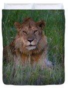 Vigilant Lion Duvet Cover
