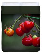 Vine Ripe Goodies  Duvet Cover by Marvin Spates