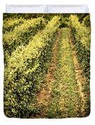 Vines Growing In Vineyard Duvet Cover