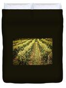 Vines Growing In Vineyard Duvet Cover by Elena Elisseeva