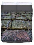 Vines On Stonework Duvet Cover