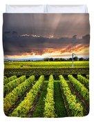 Vineyard At Sunset Duvet Cover