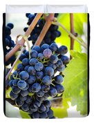 Vineyard Grapes Duvet Cover