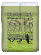 Vineyard Lines 23036 Duvet Cover