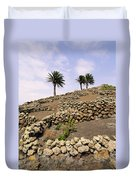 Vineyard On Lanzarote Duvet Cover