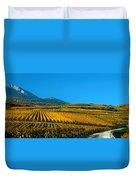 Vineyards In Autumn, Valais Canton Duvet Cover